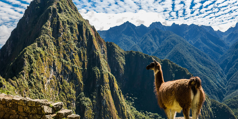Boleto de ingreso a Machu Picchu - Huayna Picchu