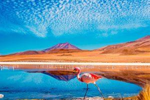 Lago Colorado - Salar de Uyuni