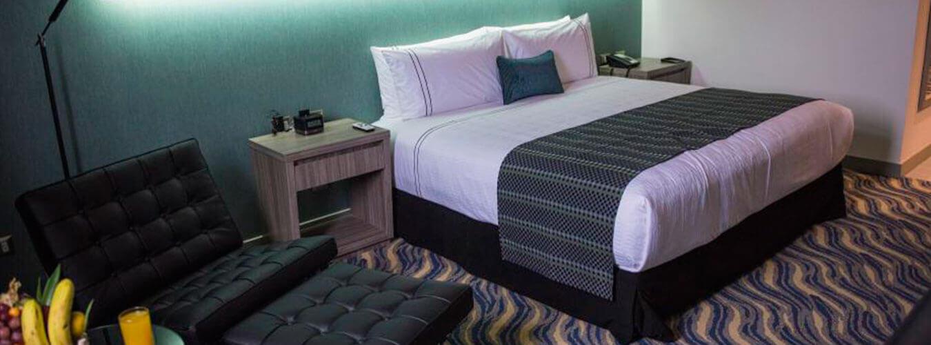 Sonesta Hotel Arequipa - Chullitos Viajes