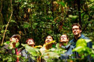 Observacion de aves en áreas naturales protegidas Amazonas